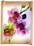Опоры для орхидей