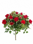 Патио розы