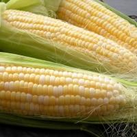 """кукуруза """"сахарная деликатесная"""""""