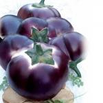 Баклажан Гелиос (20 шт/упак) оптом