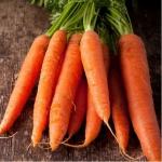 Морковь Каротан Поздняя (10 шт/упак.) оптом